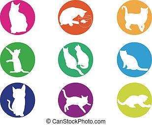 gatos, silueta, ilustración, colorf