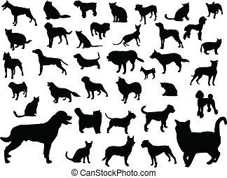 gatos, silueta, perros