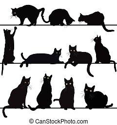 gatos, siluetas, conjunto