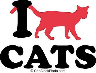 gatti, amore, icona