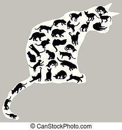 gatti, gatto, silhouette, dentro, uno