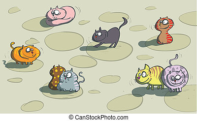 gatti, pavimento