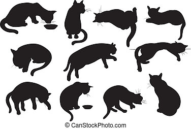 gatti, set, silhouette