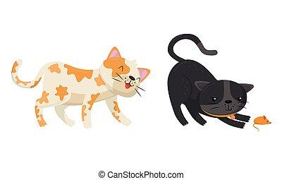 gatti, set, vettore, giocoso, gioco, giocattolo mouse, camminare