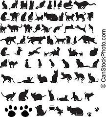 gatti, silhouette, vettore