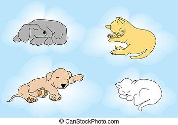 gatti, sonnolento, cani, fondo