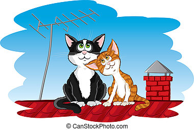 gatti, tetto