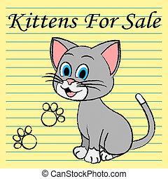 gattini, vendita, gatti, annuncio pubblicitario, mercato, mostra