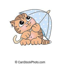 gattino, carino, sotto, vettore, illustrazioni, ombrello