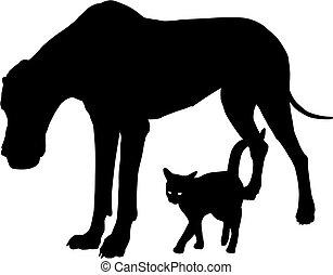 gatto, amici, cane
