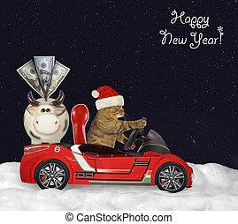 gatto, automobile, santa, legno rosso, guida