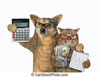 gatto, cane, banchieri, 3