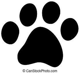 gatto, cane, zampa