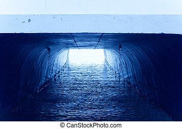 gatto, catamarano, vista angolare bassa, come, uno, luce, tunnel
