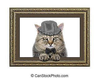 gatto, in, il, cappello, e, cravatta arco, occhiate, fuori, di, il, cornice