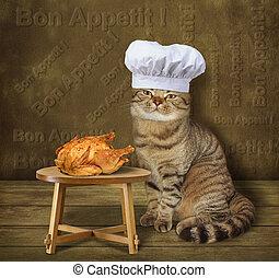 gatto, pollo, cuoco