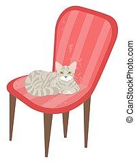 gatto, poltrona, coccolare, gattino, sedia, seduta, gattino