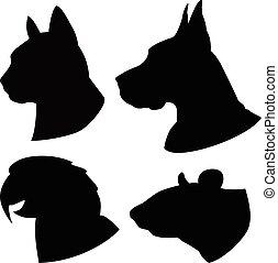 gatto, set, silhouette, cane, teste