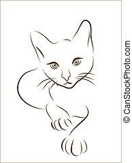 gatto, silhouette