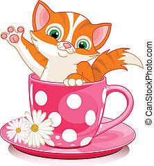 gatto, tazza