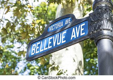 gatuskylt, bellevue, ave, den, berömd, aveny, med, den,...