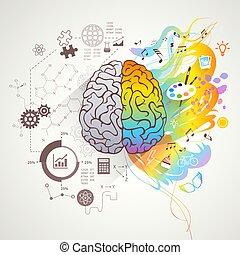 gauche, cerveau, concept, droit