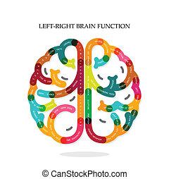 gauche, créatif, cerveau, infographics, droit, idée, fonction
