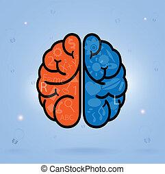 gauche, créativité, business, connaissance, cerveau, icône, droit, signe, symbole, education