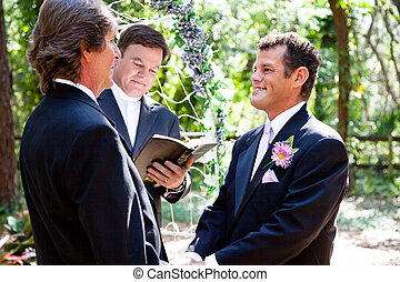 Gay Couple Getting Married - Handsome gay couple getting...