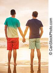 Gay couple watching sunset