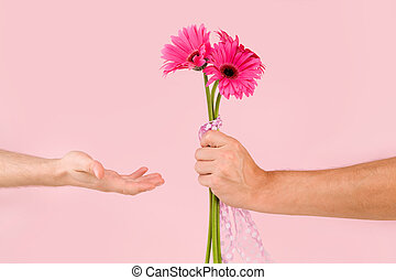 Gay couple with pink gerbera flower.