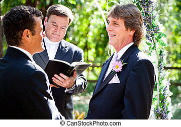 Gay Marriage - Expression of Love - Handsome groom looks...