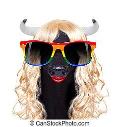 gay pride cow
