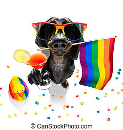 gay pride dog - crazy funny gay homosexual dachshund sausage...