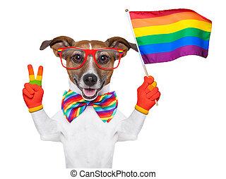 gay pride dog waving a rainbow flag
