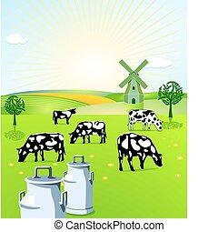 gazdálkodás, tejcsarnok
