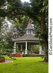 gazebo under the trees