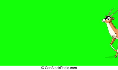 Gazelle Antelope Walks. Animated Motion Graphic Isolated on Green Screen