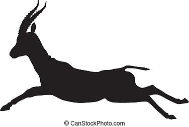 Art et illustrations de gazelle 921 clip art vecteur eps graphiques et illustrations de - Gazelle dessin ...