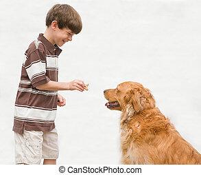 ge sig, pojke, belöna, hund