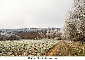 geada, paisagem inverno