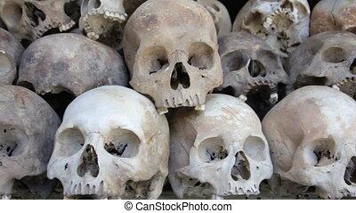 gebeente, akker, schedels, doden