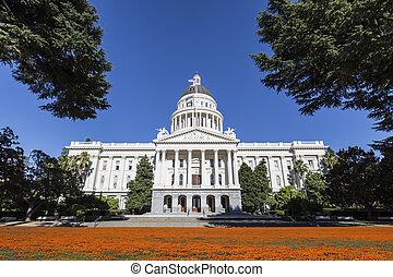 gebouw, californië, capitool, klaprozen