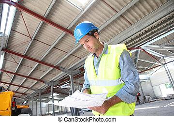 gebouw, controleren, bouwsector, plan, onder, ingenieur