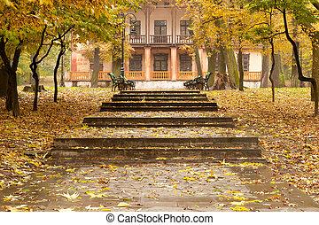 gebouw, herfst, park, footpath