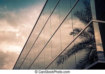 gebouw, palm, moderne, boompje, kantoor