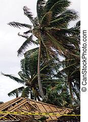 gebouw, tropische , gedurende, storm, beschadigd
