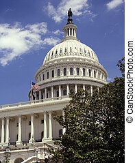 gebouw, verenigd, capitool, -, washington dc, staten