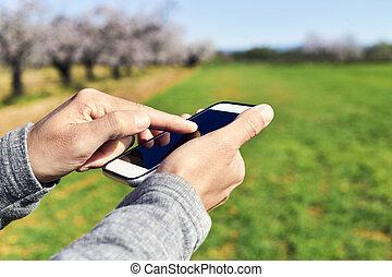 gebrauchend, smartphone, natürlich, landschaftsbild, mann