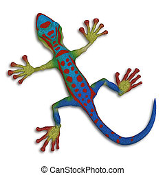Gecko lizard - isolated on the white background